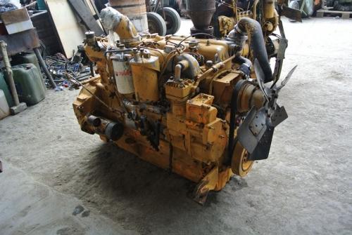 tn-dsc-6946